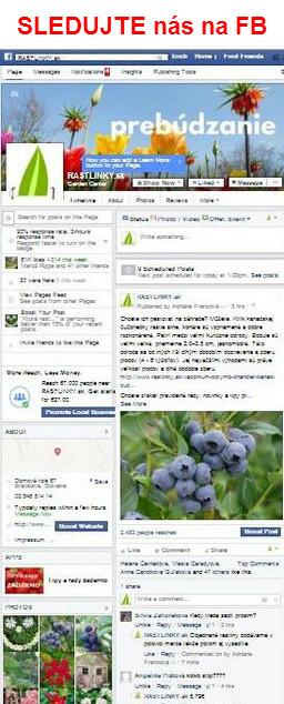 Recenzie Rastlinky.sk na facebooku