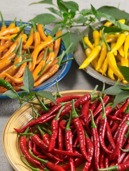 Papričky z kvetináčov