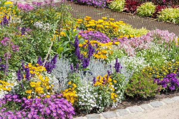 Ako si jednoducho zadovážiť vlastné rastliny