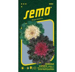 Brassica oleracea / Kel okrasný ´CORAL F1 MIX´, bal. 20 s.