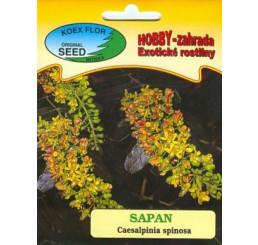 Caesalpinia spinosa / Cezalpínia / Sapan žltý, bal. 5 sem.