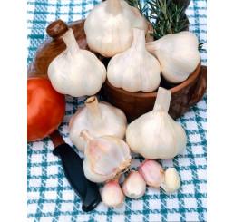 Allium sativum ´Messidrome´ / Kuchynský cesnak na výsadbu, bal. 3 hlavičiek, 125 g