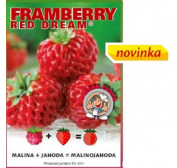 Fragaria Framberry® ´Red Dream´ / Malinojahoda, K9