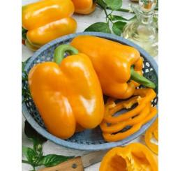 Paprika oranžová, kg