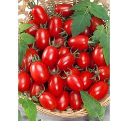 Rajčiny cherry ´Mirado®Red´, prirodzene rezistentné, štepená rastlina, K12