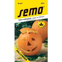 Tekvica pre Halloween aj konzervovanie ´GRAN GIGANTE´, bal. 2 g