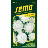 Helichrysum bracteatum / Slamiha slamienková BIELA veľkokvetá, bal. 0,4 g