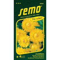 Helichrysum bracteatum / Slamiha slamienková ŽLTÁ veľkokvetá, bal. 0,4 g