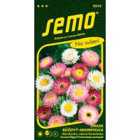 Helipterum roseum / Slamihovka ružová ´ZMES´, bal. 0,5 g