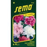 Petunia x hybrida / Petunia mnohokvetá DUO DOUBLE F1, plnokvetá zmes, bal. 30 pelet