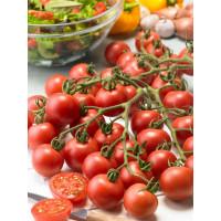 Rajčiny Cherry červené, mini, kg