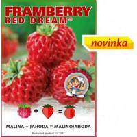 Fragaria Framberry® ´Red Dream´ / Malinojahoda, K9