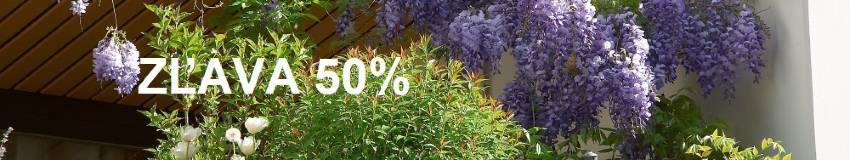 Zľavy 50%