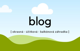 Blog Rastlinky.sk