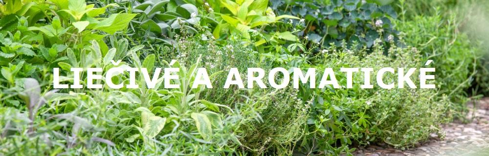Liečivé a aromatické