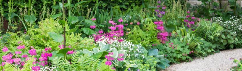 Záhrada na piesočnatej pôde