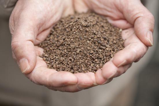 Hnojenie a ochrana ovocín