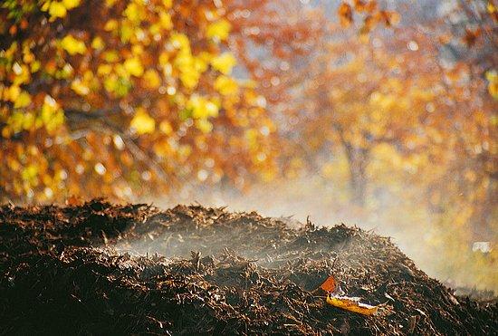 Úprava záhradky na jeseň