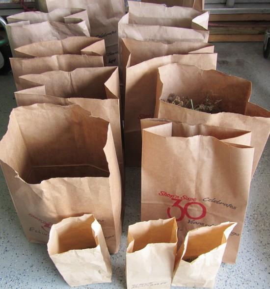 Uskladnenie semien v papierových vreckách