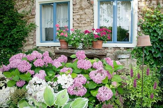 Retro záhrada